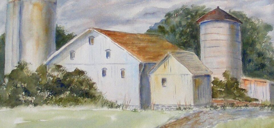 Medina County Farmland