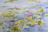 Waterlilies VI