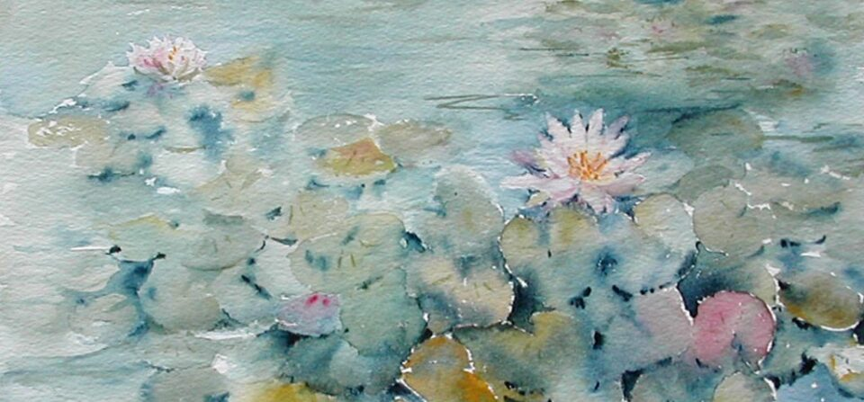 Calm Pond with Waterlilies