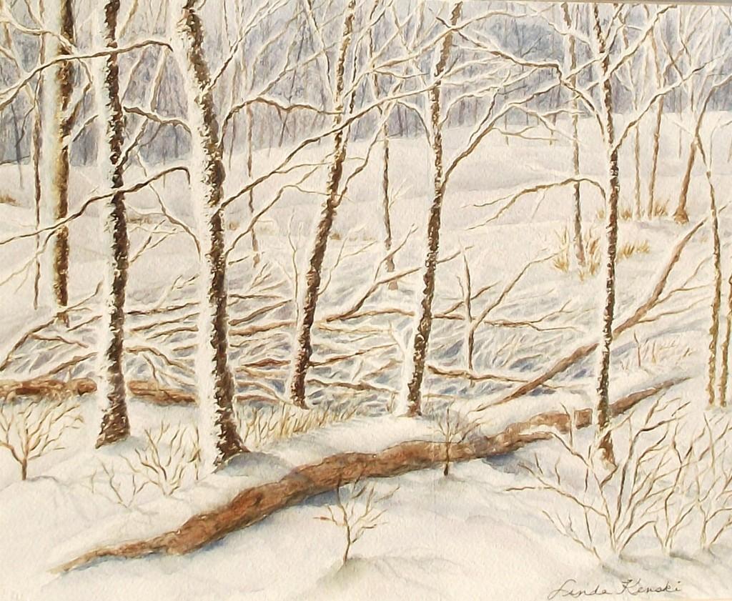Winter woodland 0309